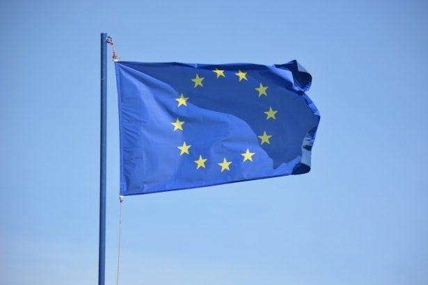 Sondaggio Elezioni Europee: boom dei 'sovranisti'