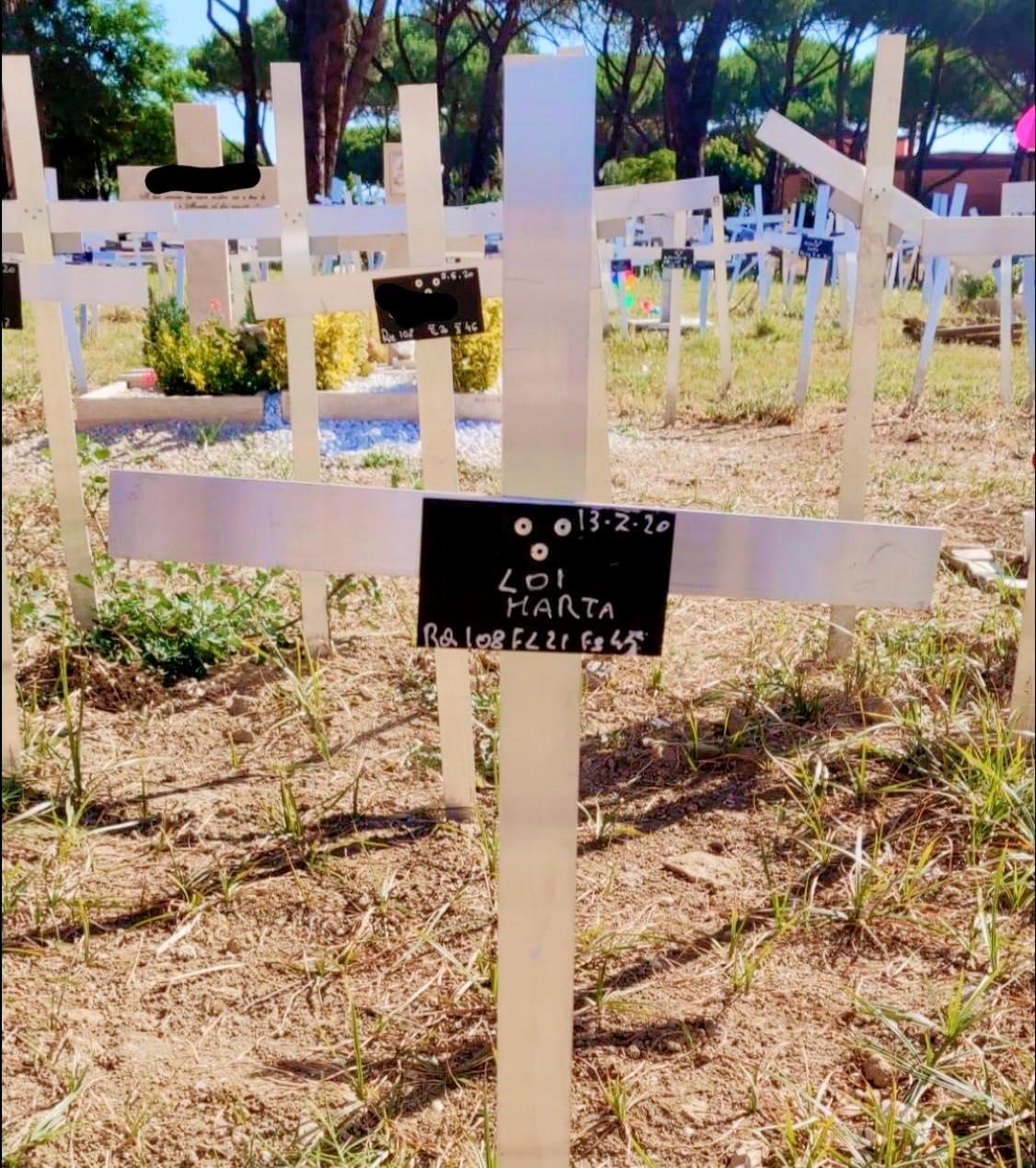 Feti sepolti al cimitero di Roma, nelle tombe spunta il nome delle madri: è polemica