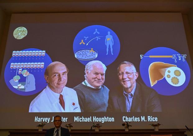 Nobel 2020 alla medicina per la scoperta del virus dell'epatite C