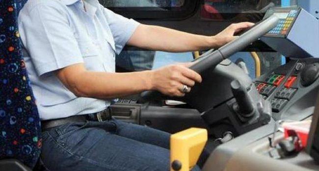 """Carenza di autisti in Sicilia? Ecco l'ambizioso progetto """"Sicily on the road"""""""